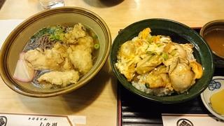 宮島 カキ丼、カキうどん