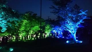 常盤公園 呼応する森3
